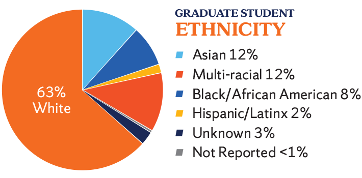 Graduate ethnicity