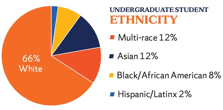 Undergraduate ethnicity