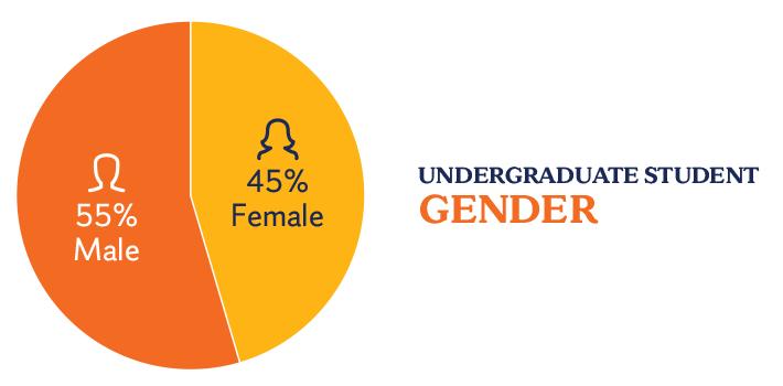 Undergraduate gender